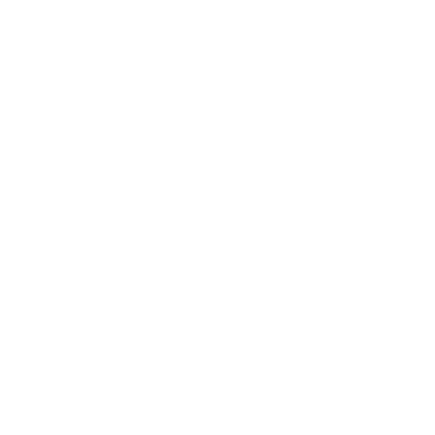AllDayLion